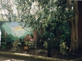 Flying Bull School garden mural 2001