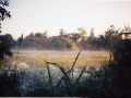 misty lake by Mark E.W. Lewis