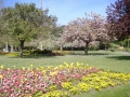 park life 2008