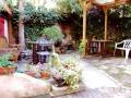 Lodge garden 2010