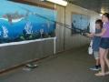 whale_island_subway_july_11__19_